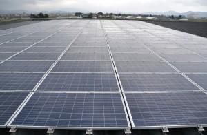 設置された太陽光パネル