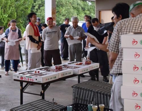 指導員が収穫・選別時の注意点を説明。