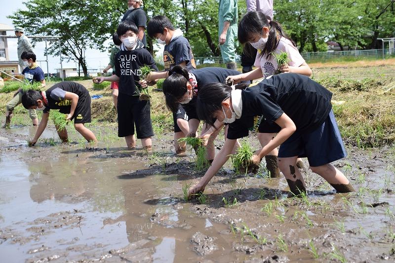 事業 水田 リノベーション