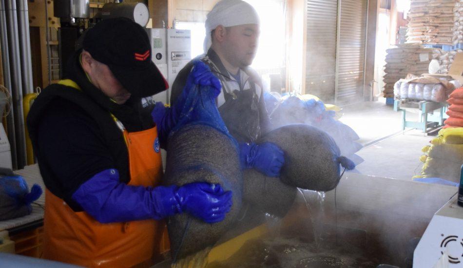 大泉育苗組合 水稲種子の温湯消毒始まる